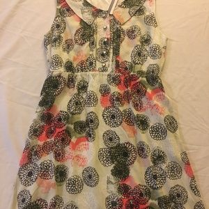 TULLE Anthropologie size Medium Dress NWT